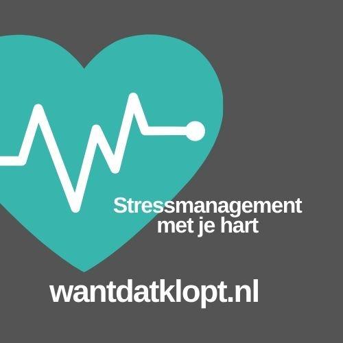 logo wantdatklopt.nl turquoise hart